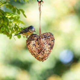 Seed Heart 140g