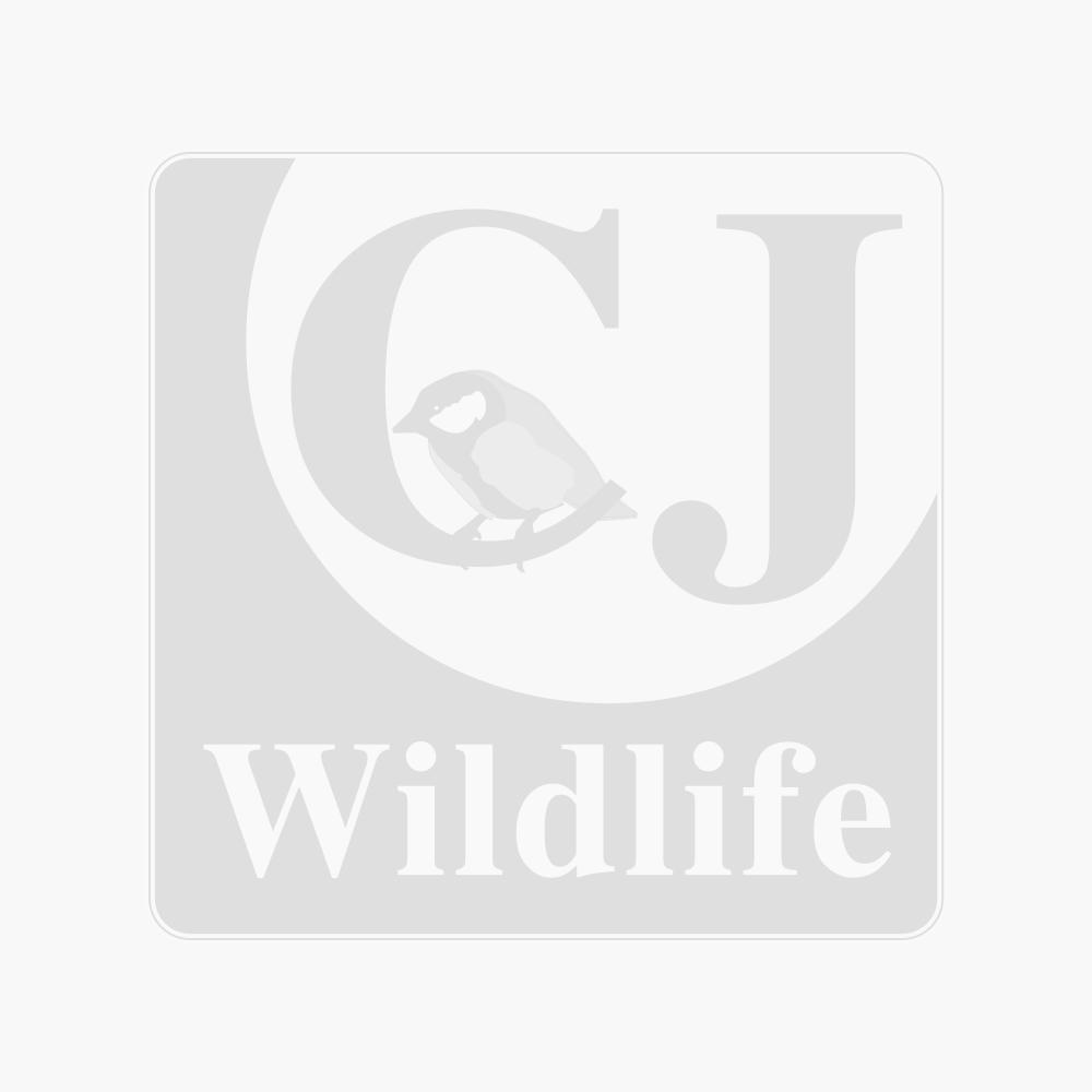 Green Defender 6 port Seed Feeder & 1kg FREE Premium Kibbled Sunflower Hearts