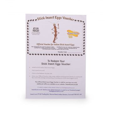 Voucher for Replacement Stick Insect Eggs