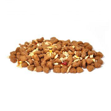 Hedgehog Feast