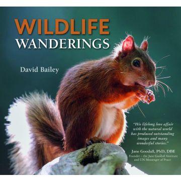 Wildlife Wanderings