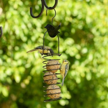 Fat Ball Feeder – Wren