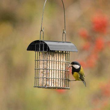 Sydney Bird Feeder - Black