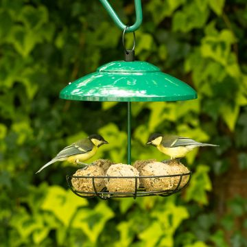 Bunbury Fat Ball and Peanut Bar Feeder Green