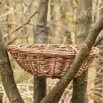 Long-eared Owl & Hobby Nesting Basket