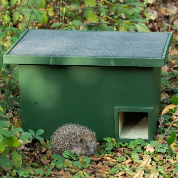 Eco-plate Hedgehog House