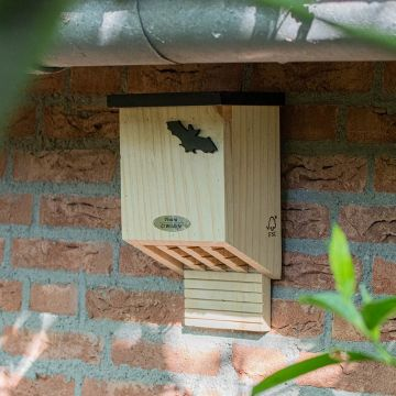 Falkenstein Bat Box