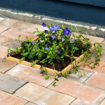 Wooden Ground Planter