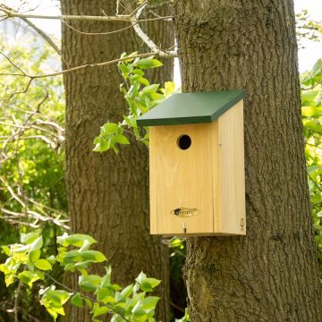 Iowa Nest box 32mm