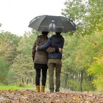 Duo Umbrella with Bird Silhouette