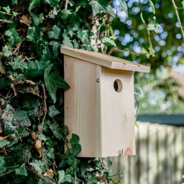 Build Your Own Wooden Nest Box