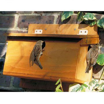 Plywood House Sparrow Terrace