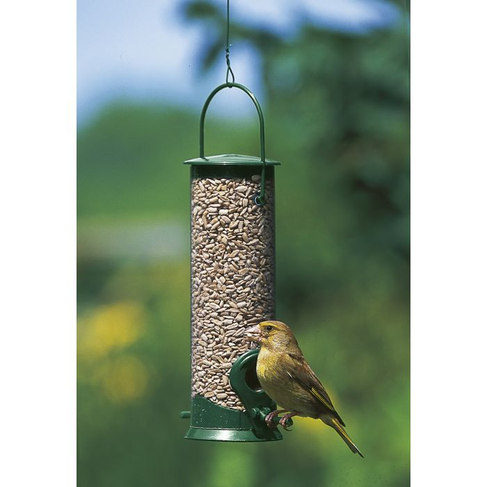 Discovery Plastic Hanging Seed Feeder