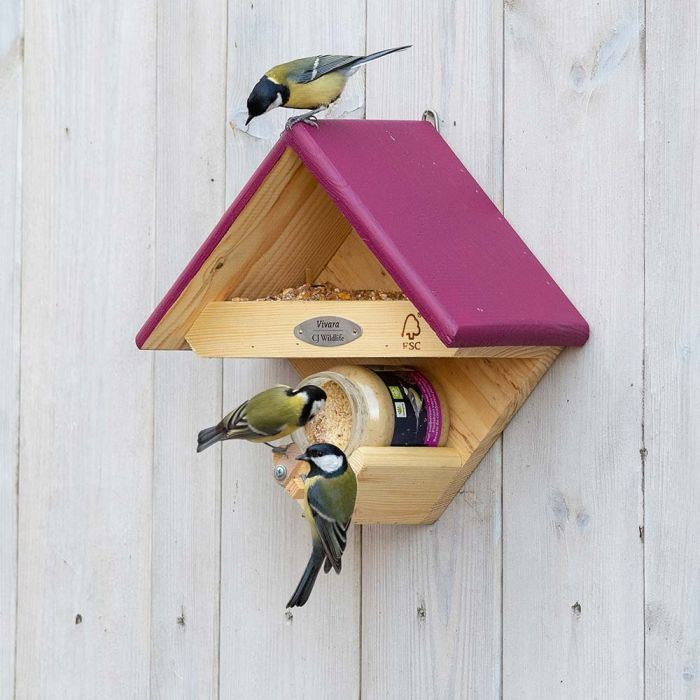 Cumberland Bird Feeder - Plum