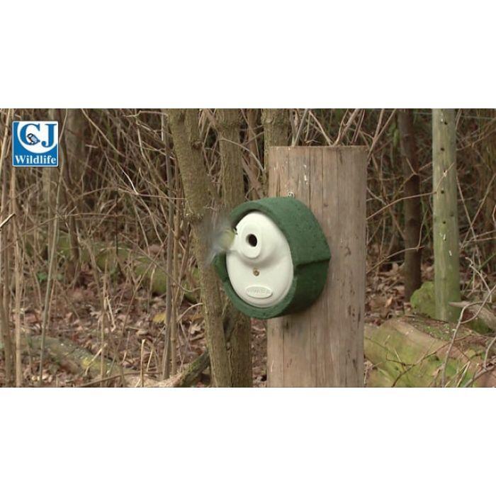 WoodStone® Alicante 28mm Nest Box (Brown)