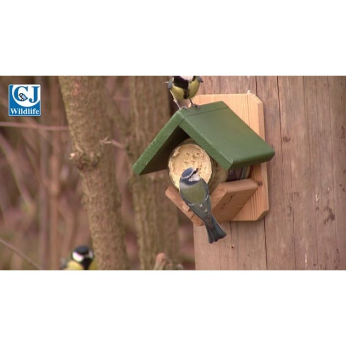 Peanut Butter for Birds - with Insects