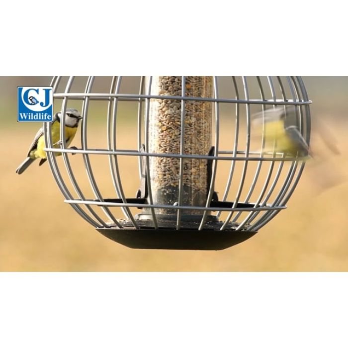 National Trust Athena Seed Guardian Feeder
