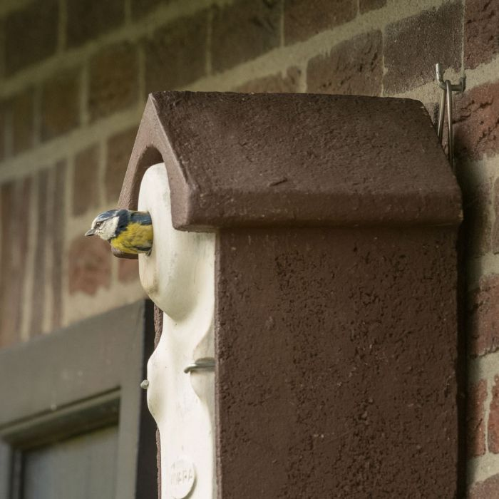 WoodStone® Seville 28mm Nest Box (Brown)