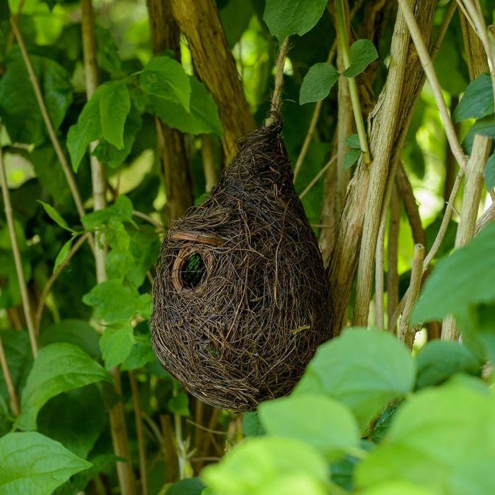 Funchal Lounge Nest