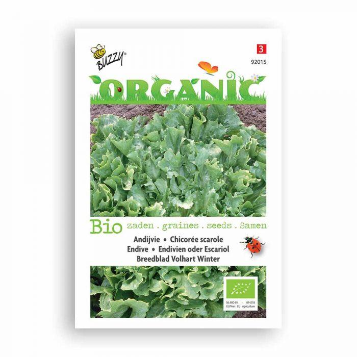 Buzzy® Organic Endive Avantgarde (BIO)