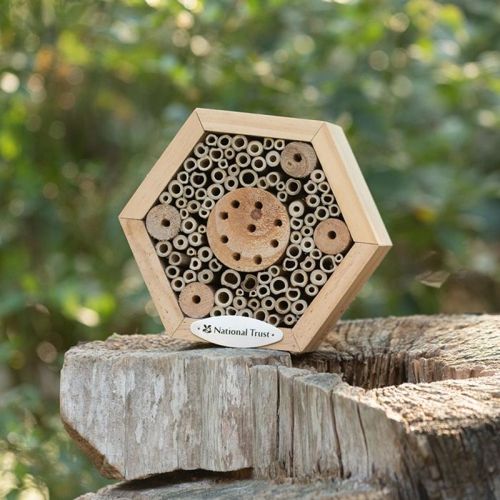 National Trust Hexagon Insect House