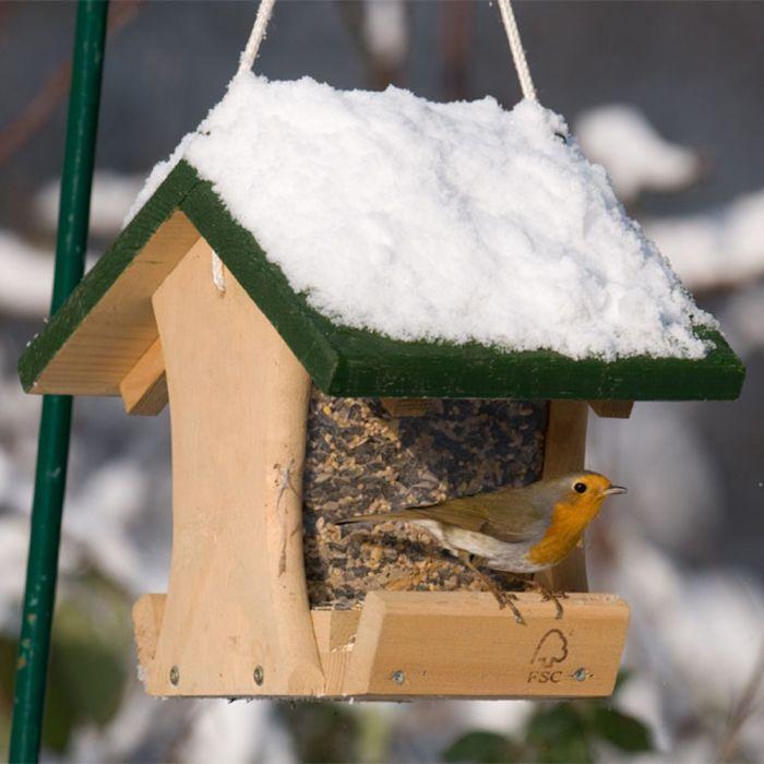 Colorado Seed Feeder