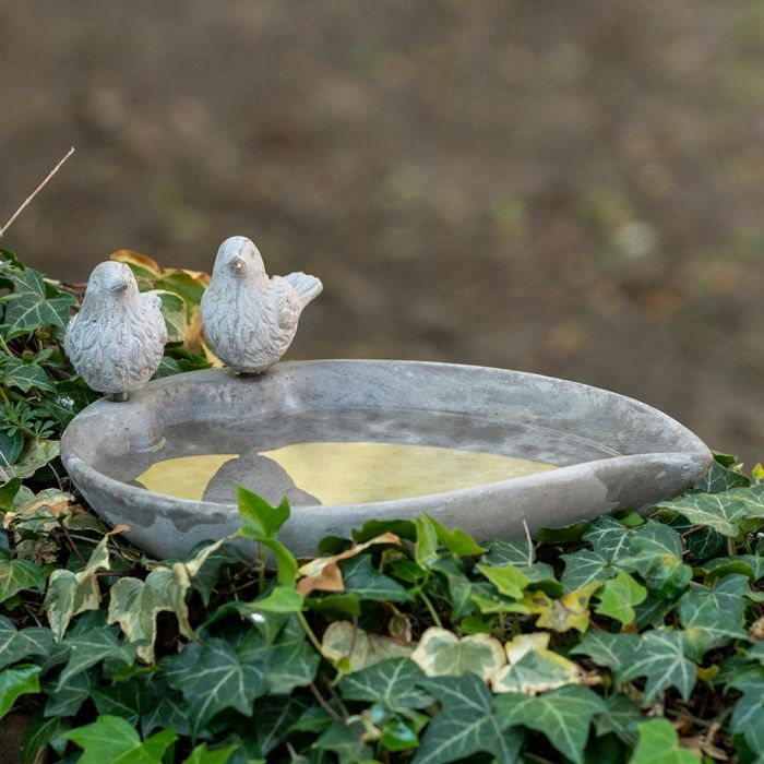Licony Bird Bath