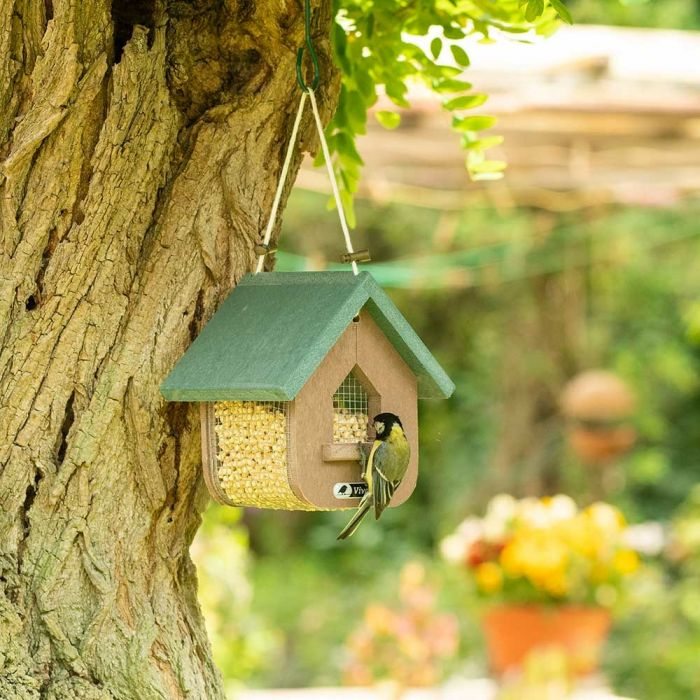 Miletto Recycled Peanut & Suet Feeder