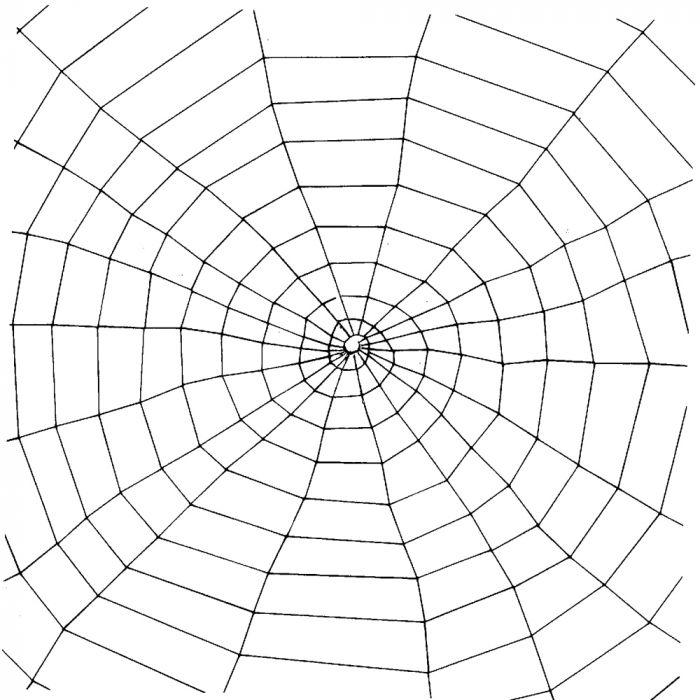 Window Web