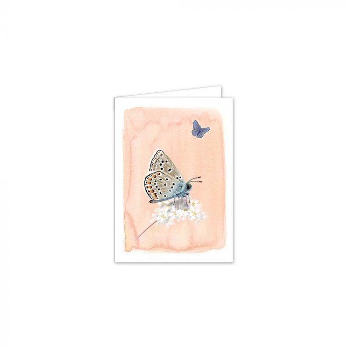 Myrte Common Blue Butterfly Card