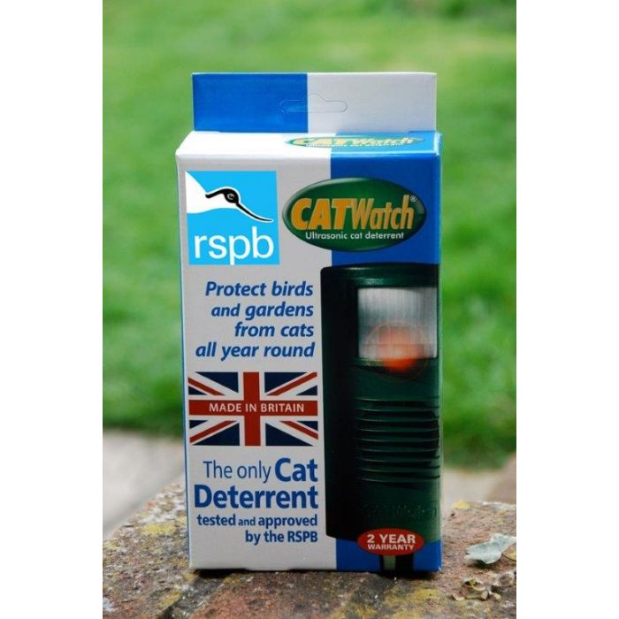 CatWatch Box