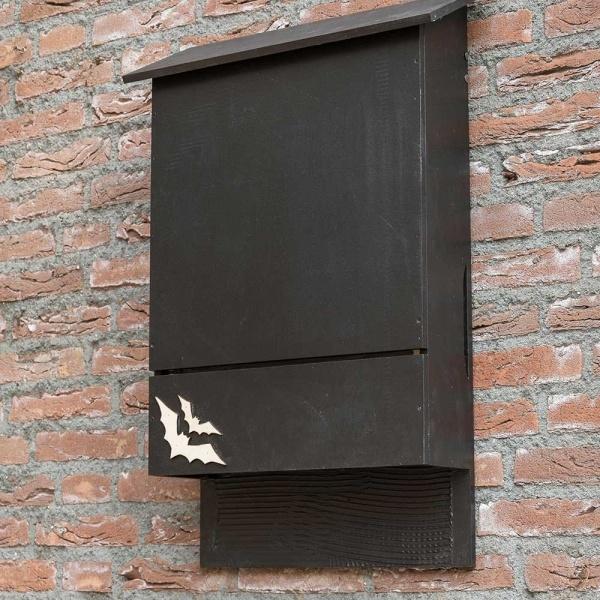 A bat box on a wall