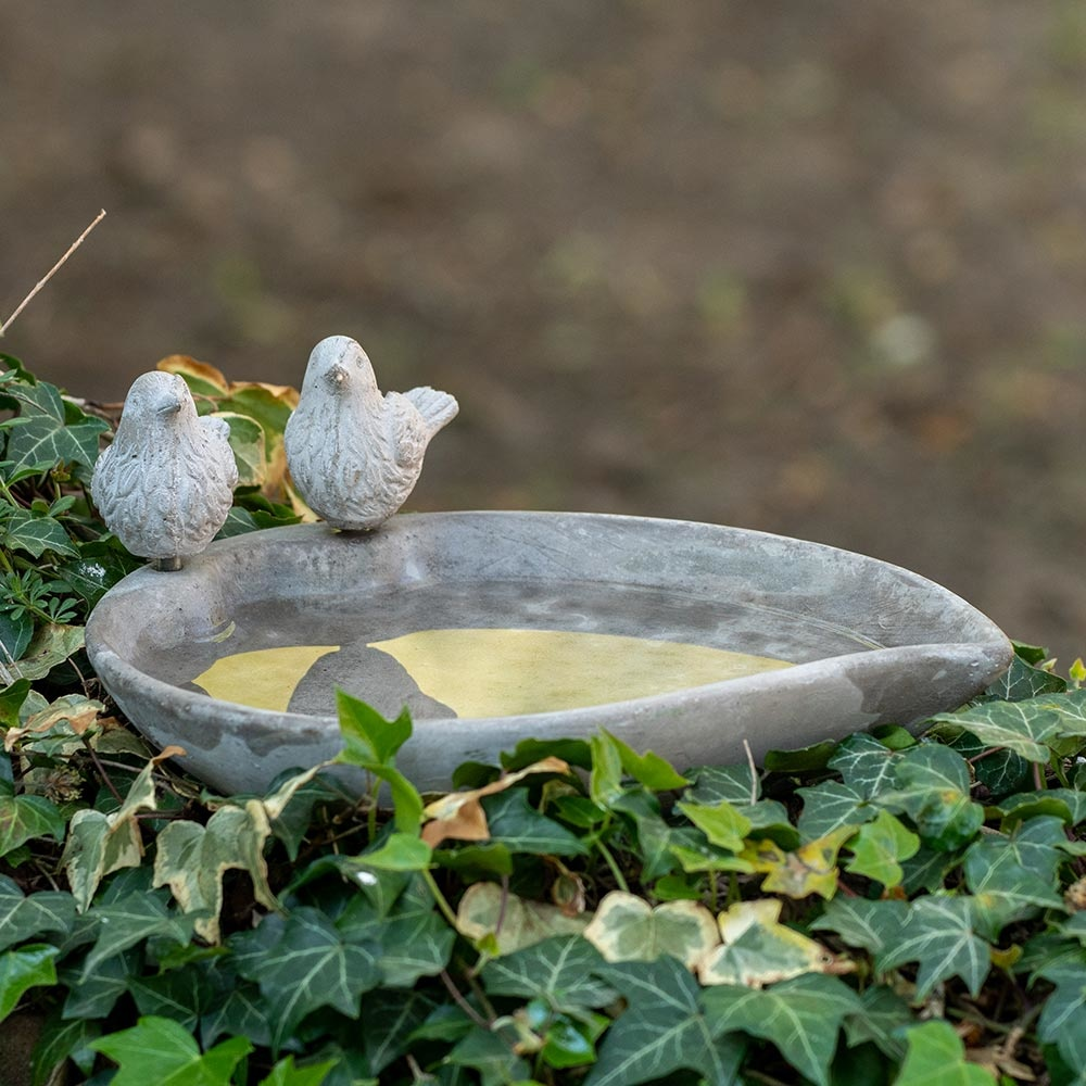 Licony bird bath