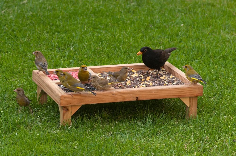 Ground feeder