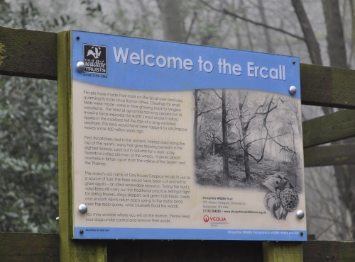Ercall Wood Nest Box Project
