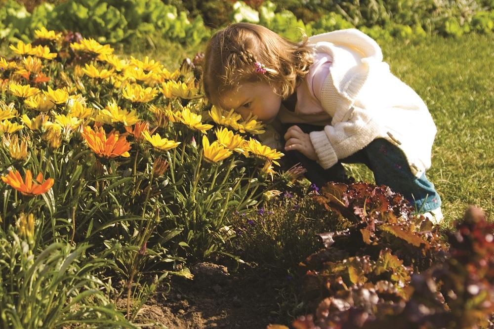 kids_gardening
