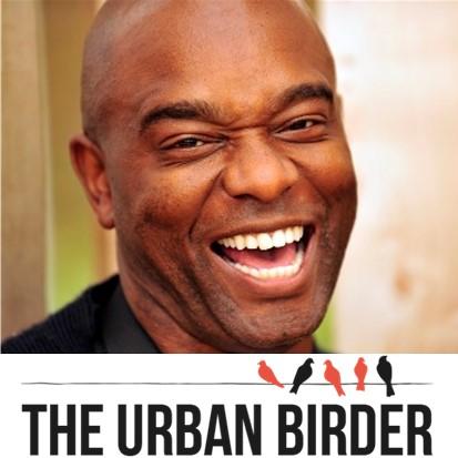 Urban Bird Feeding