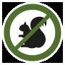 Green Squirrel Icon