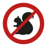 Red Squirrel Icon