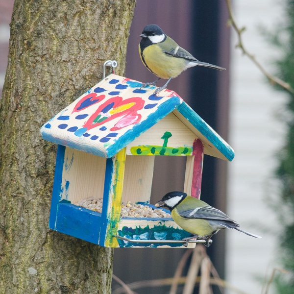 Colourfully decorated nest box