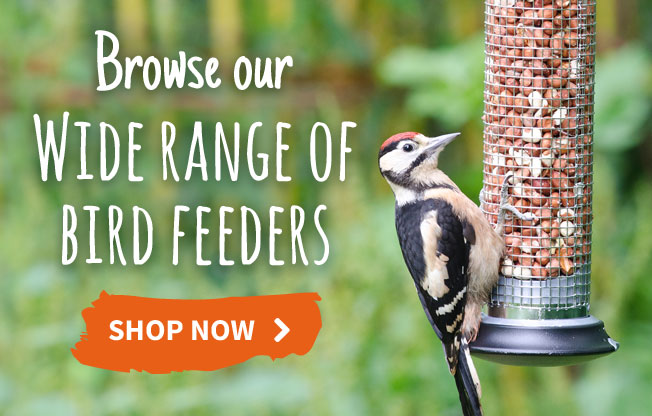 Browse our range of bird feeders