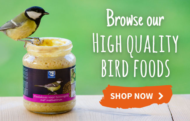 High quality bird foods