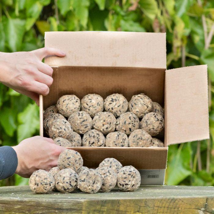 Box of 50 Ultimate Fat Balls
