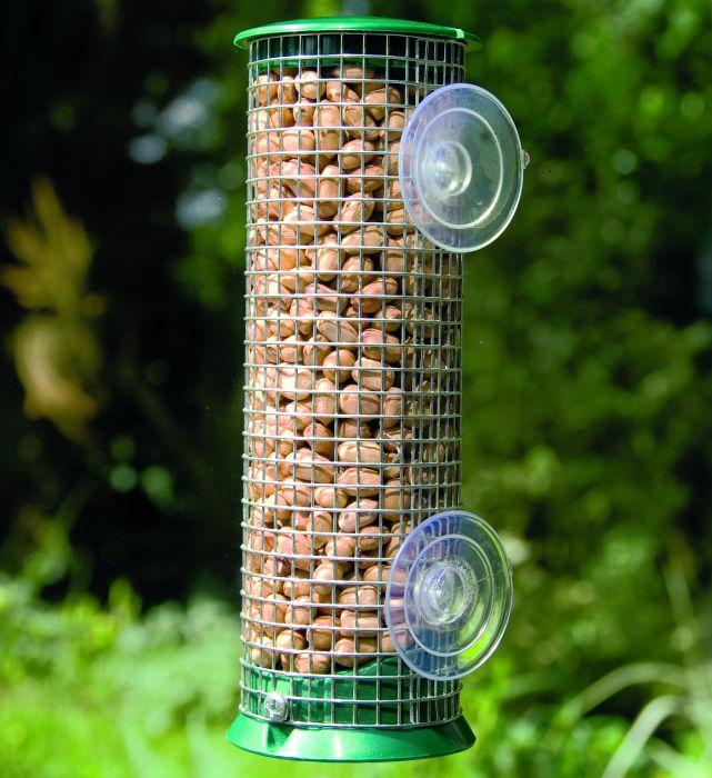 discovery plastic peanut window feeder