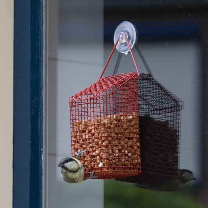 Window Peanut Feeder