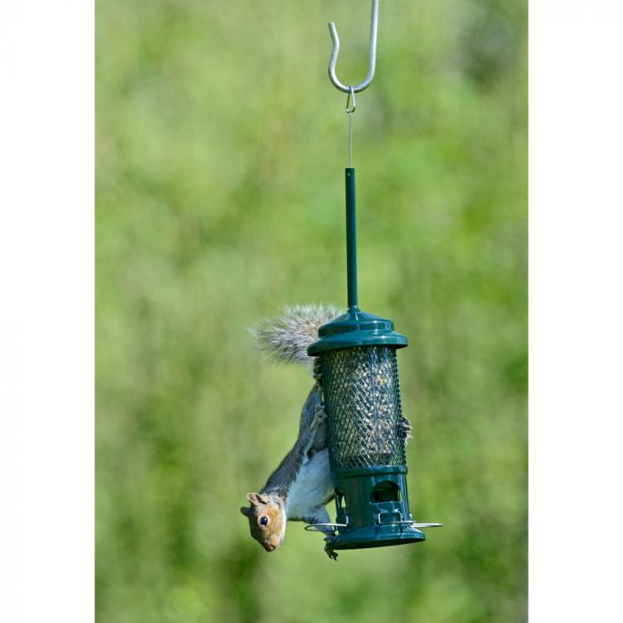 Squirrel Buster Seed Feeder