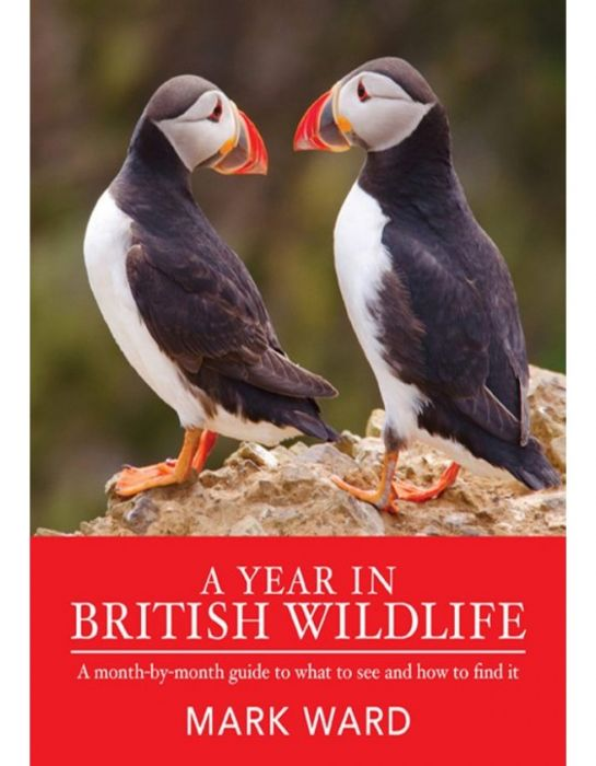 A Year in British Wildlife: A Month-by-Month Guide to What to See and How to Find It