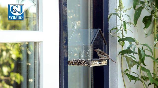 Samos Window Feeder