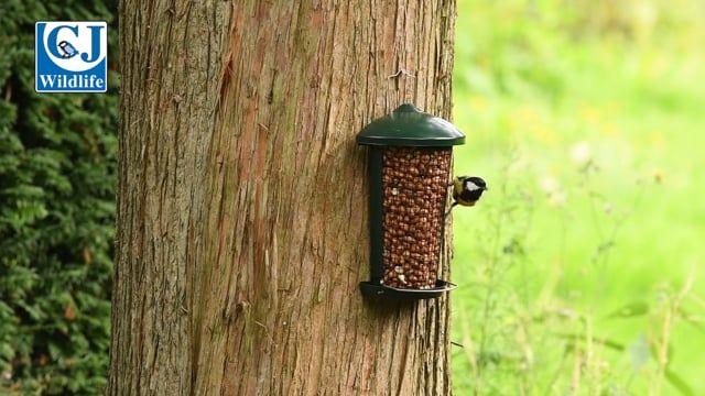 Delta Peanut Feeder Green