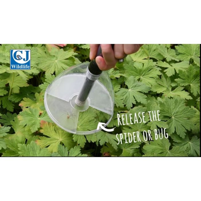 Bugaway Insect & Spider Catcher - Short